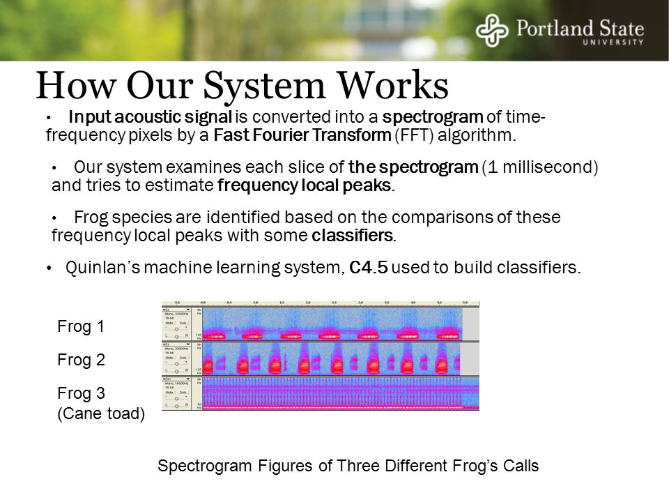 How Our System Works Quinlan's machine learning system, C4.5 used to build classifiers.
