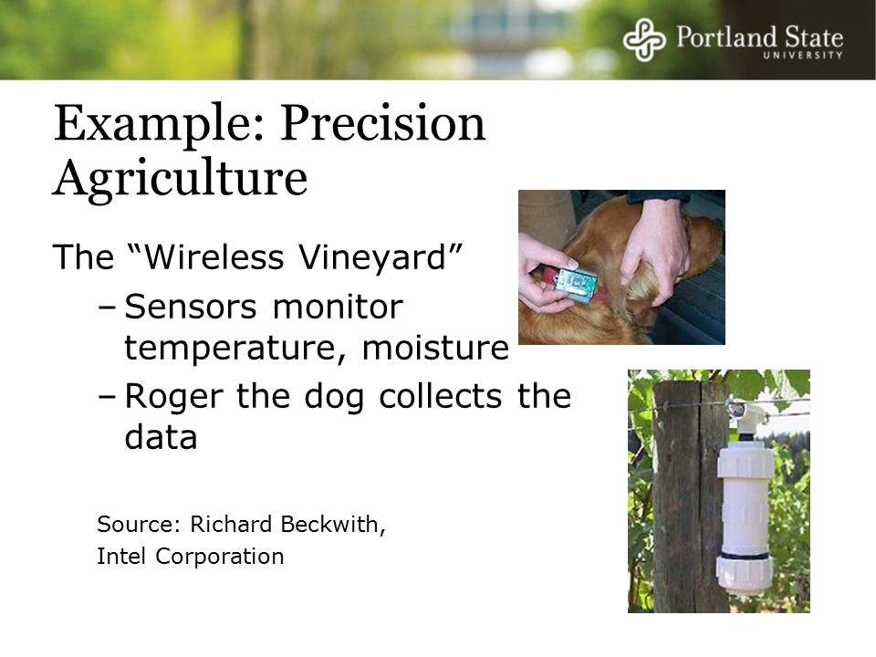 Example: Precision Agriculture The Wireless Vineyard –Sensors monitor temperature, moisture –Roger the dog collects the data Source: Richard Beckwith, Intel Corporation