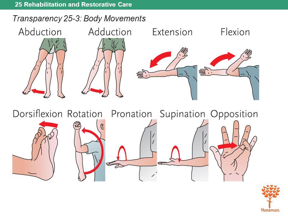 25 Rehabilitation and Restorative Care Transparency 25-3: Body Movements