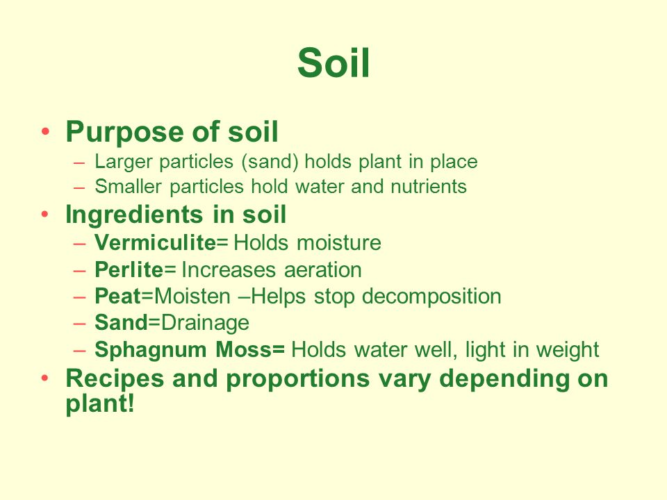 Soil Purpose of soil –Larger particles (sand) holds plant in place –Smaller particles hold water and nutrients Ingredients in soil –Vermiculite= Holds moisture –Perlite= Increases aeration –Peat=Moisten –Helps stop decomposition –Sand=Drainage –Sphagnum Moss= Holds water well, light in weight Recipes and proportions vary depending on plant!