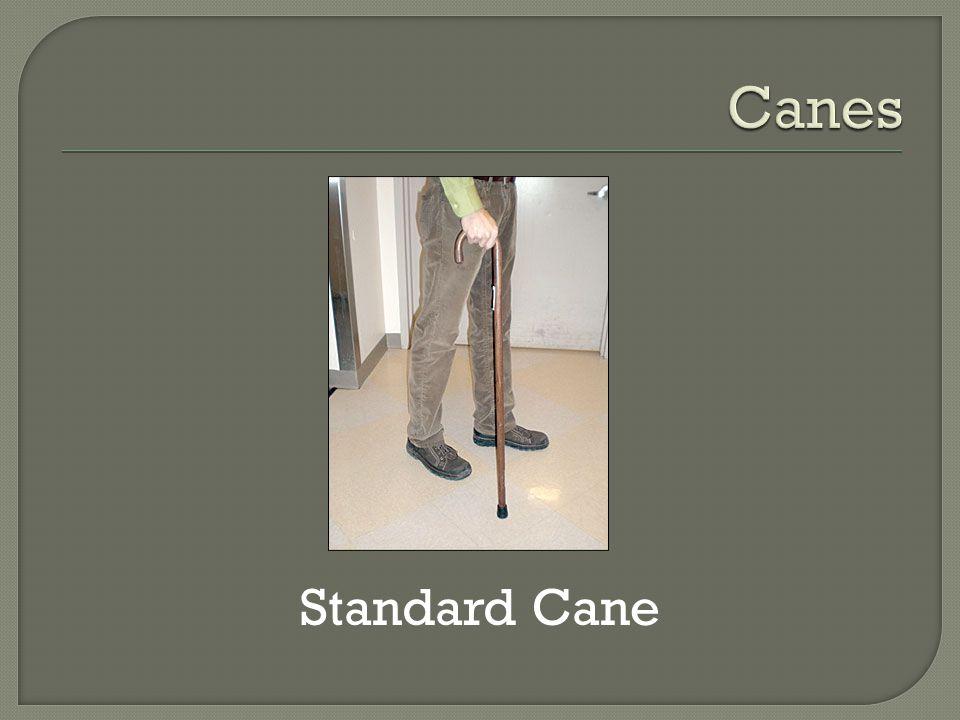 Standard Cane