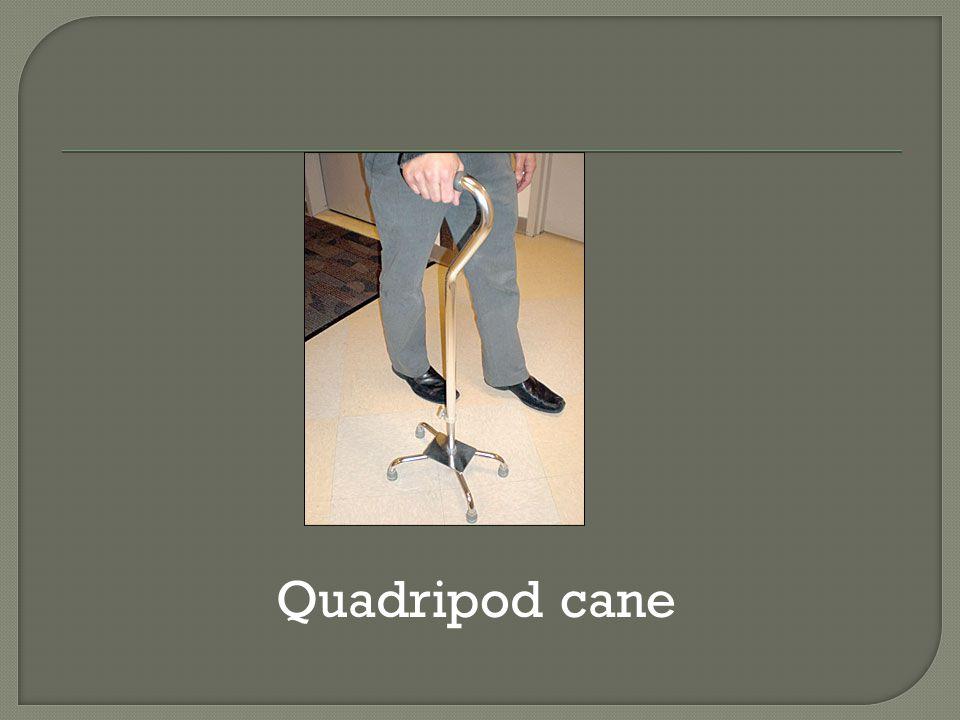 Quadripod cane