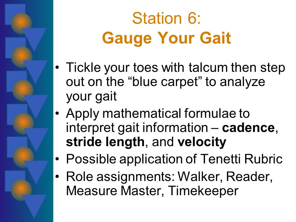 Station 6: Gauge Your Gait Tickle your toes with talcum then step out on the blue carpet to analyze your gait Apply mathematical formulae to interpret gait information – cadence, stride length, and velocity Possible application of Tenetti Rubric Role assignments: Walker, Reader, Measure Master, Timekeeper