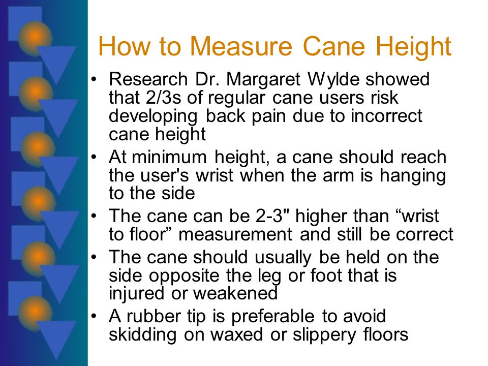 How to Measure Cane Height Research Dr.