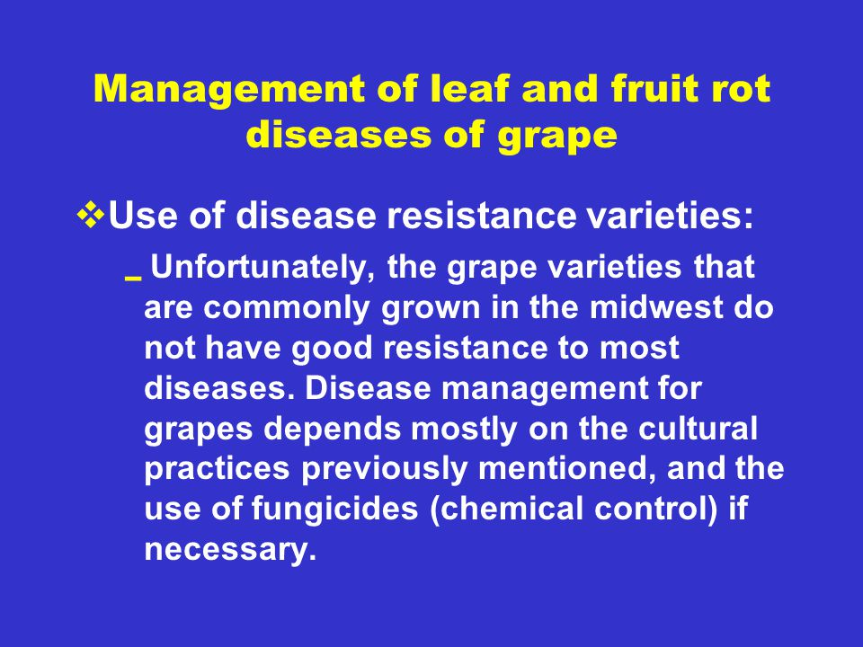 Management of leaf and fruit rot diseases of grape  Use of disease resistance varieties:  Unfortunately, the grape varieties that are commonly grown