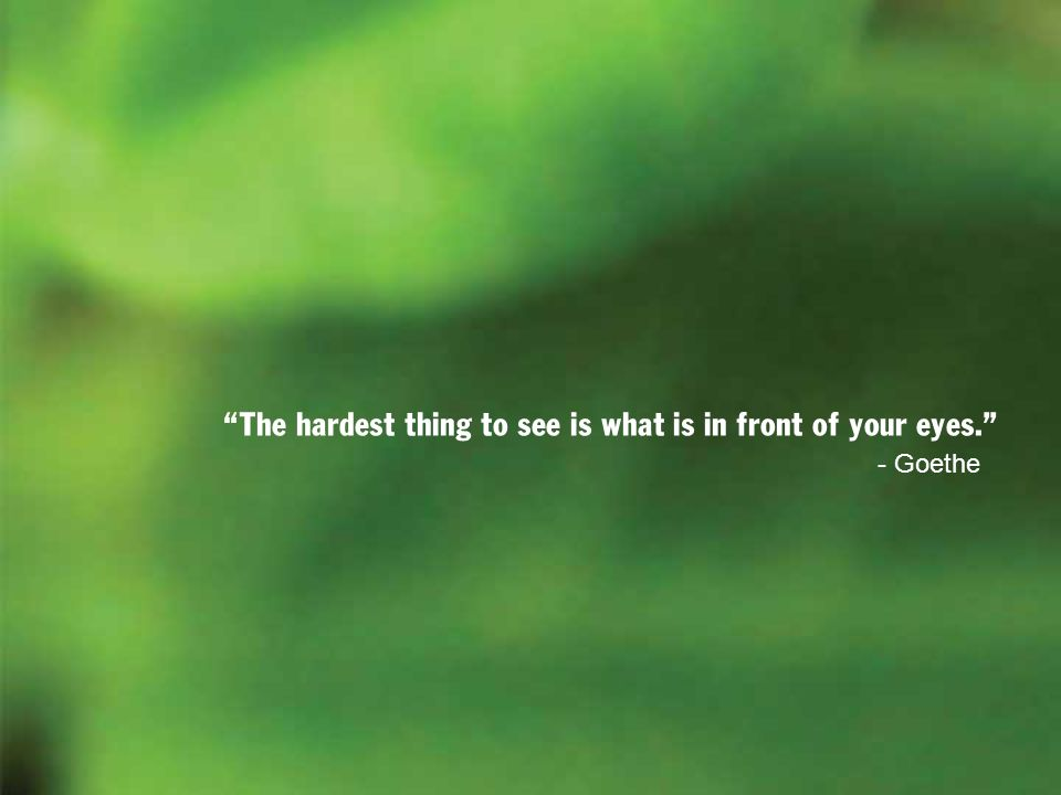 The hardest thing to see is what is in front of your eyes. - Goethe