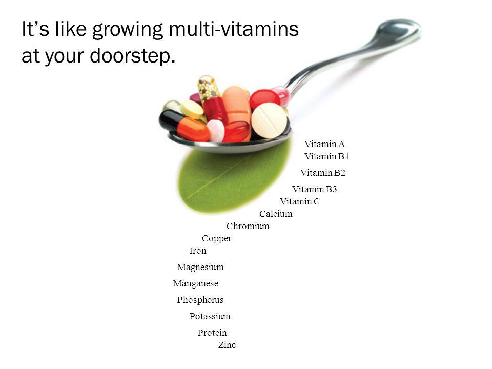 It's like growing multi-vitamins at your doorstep. Zinc Vitamin A Vitamin B1 Vitamin B2 Vitamin B3 Vitamin C Calcium Chromium Copper Iron Magnesium Ma