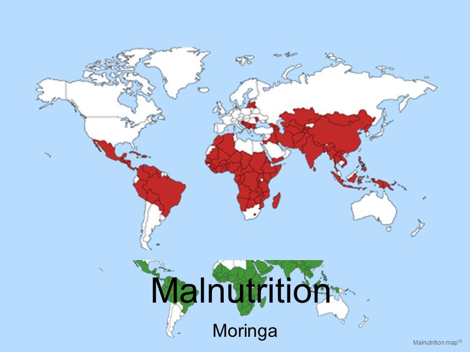 Malnutrition Moringa Malnutrition map 13