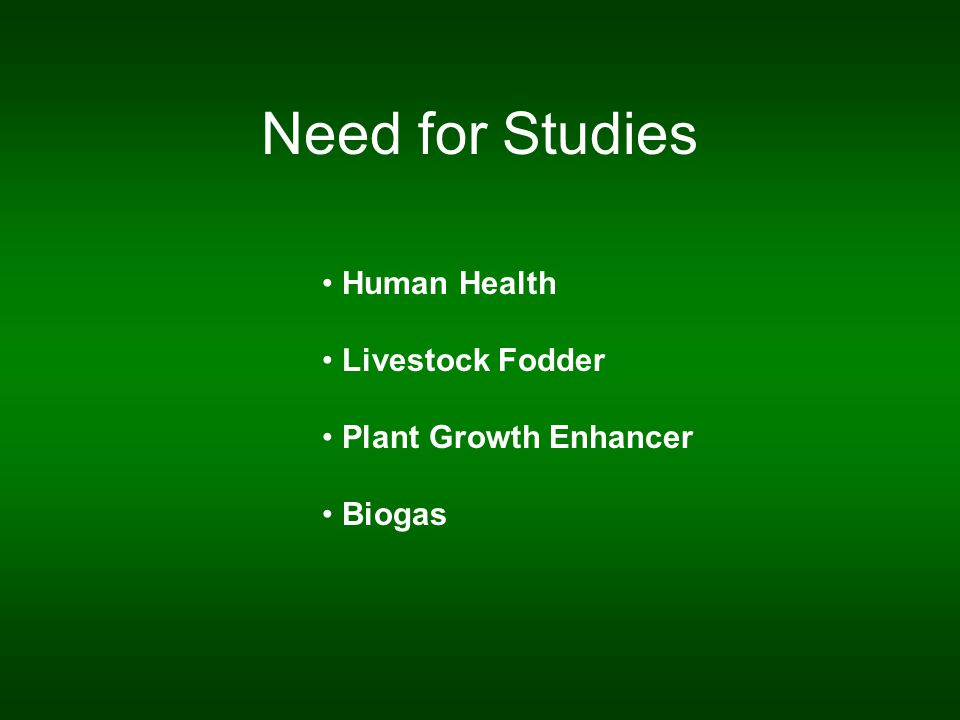 Need for Studies Human Health Livestock Fodder Plant Growth Enhancer Biogas