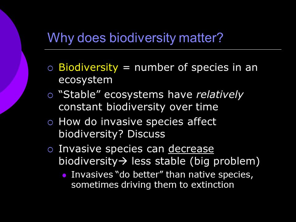 Why does biodiversity matter.