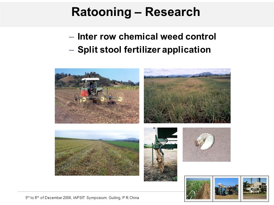 5 th to 8 th of December 2006, IAPSIT Symposium, Guiling, P R China Ratooning – Research –Inter row chemical weed control –Split stool fertilizer application