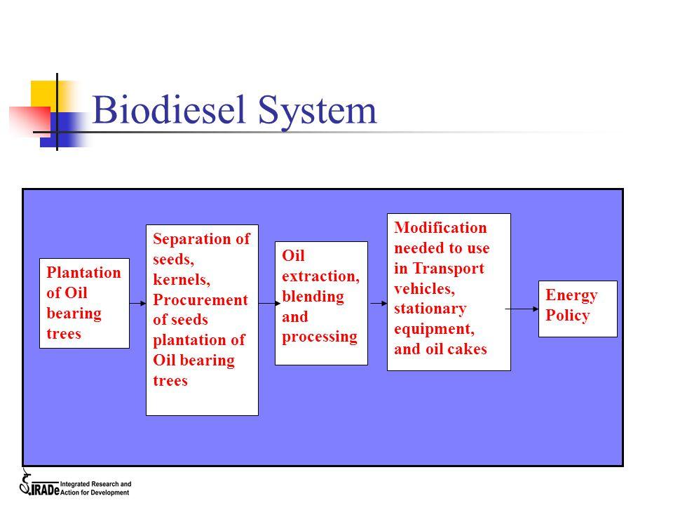 Biodiesel System Plantation of Oil bearing trees Separation of seeds, kernels, Procurement of seeds plantation of Oil bearing trees Oil extraction, bl