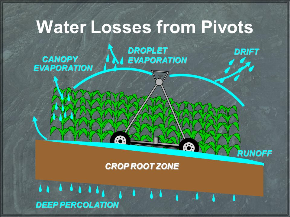 Water Losses from Pivots DRIFT DROPLETEVAPORATION CANOPY EVAPORATION RUNOFF DEEP PERCOLATION CROP ROOT ZONE