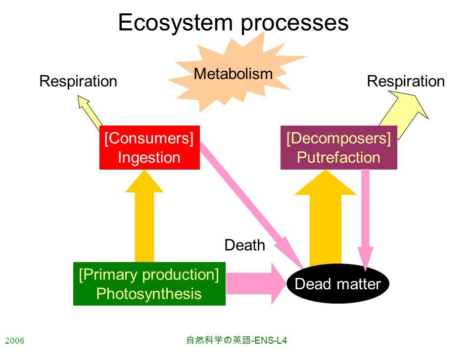 2006 自然科学の英語 -ENS-L4 Respiration [Decomposers] Putrefaction Death Dead matter Ecosystem processes [Primary production] Photosynthesis [Consumers] Ingestion Metabolism