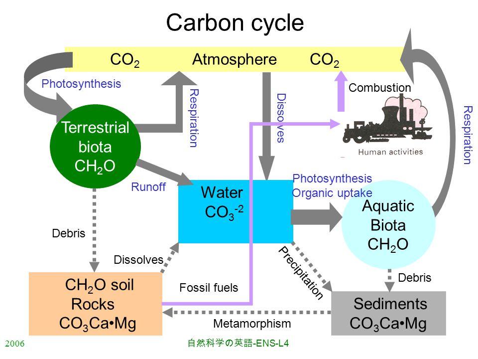 2006 自然科学の英語 -ENS-L4 CO 2 Atmosphere CO 2 Respiration Carbon cycle CH 2 O soil Rocks CO 3 CaMg Aquatic Biota CH 2 O Terrestrial biota CH 2 O Sediments CO 3 CaMg Photosynthesis Dissolves Combustion Water CO 3 -2 Photosynthesis Organic uptake Runoff Metamorphism Dissolves Fossil fuels Precipitation Debris