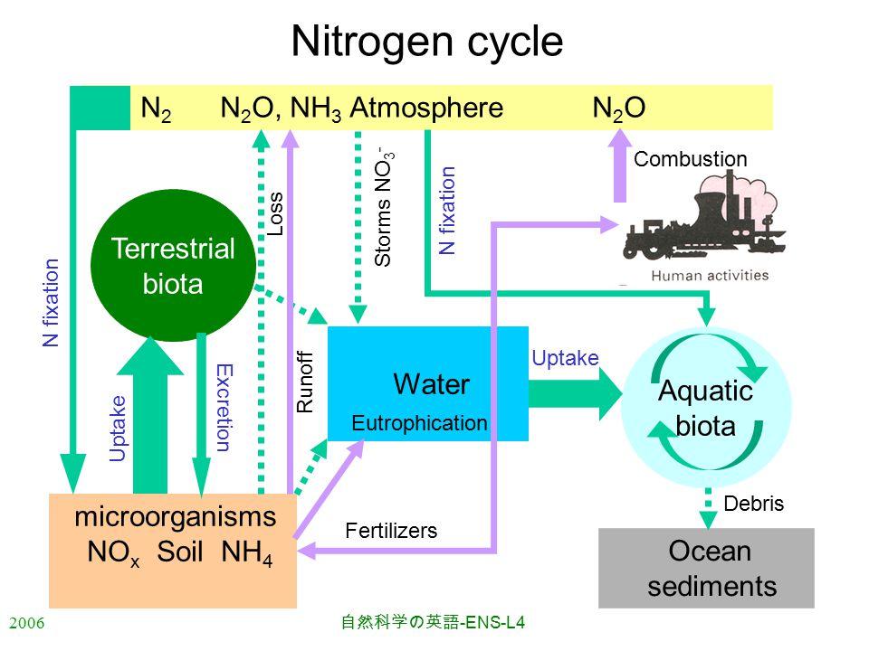 2006 自然科学の英語 -ENS-L4 N 2 N 2 O, NH 3 Atmosphere N 2 O Nitrogen cycle Water microorganisms NO x Soil NH 4 Aquatic biota Terrestrial biota Ocean sedimen