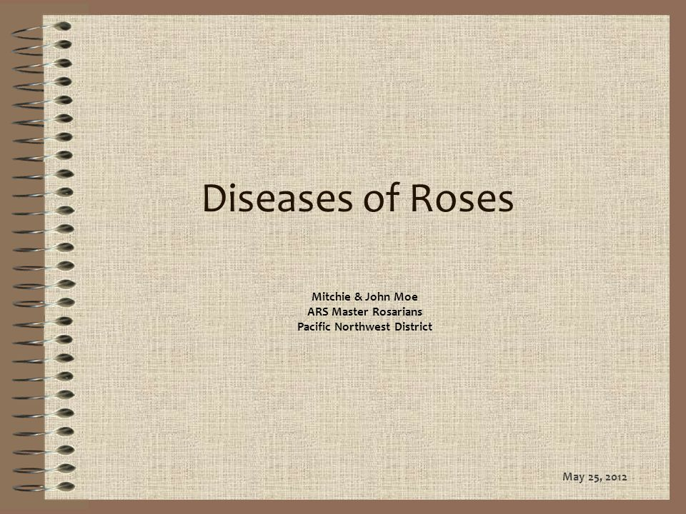 Diseases of Roses Mitchie & John Moe ARS Master Rosarians Pacific Northwest District May 25, 2012