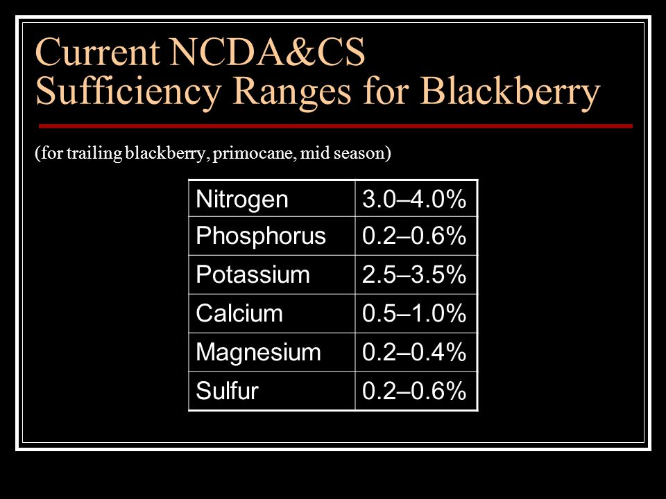 Current NCDA&CS Sufficiency Ranges for Blackberry (for trailing blackberry, primocane, mid season) Nitrogen3.0–4.0% Phosphorus0.2–0.6% Potassium2.5–3.5% Calcium0.5–1.0% Magnesium0.2–0.4% Sulfur0.2–0.6%