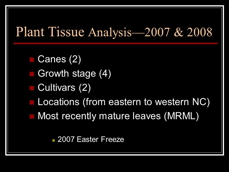Plant Tissue Analysis—2007 & 2008 Canes (2) Growth stage (4) Cultivars (2) Locations (from eastern to western NC) Most recently mature leaves (MRML) 2007 Easter Freeze