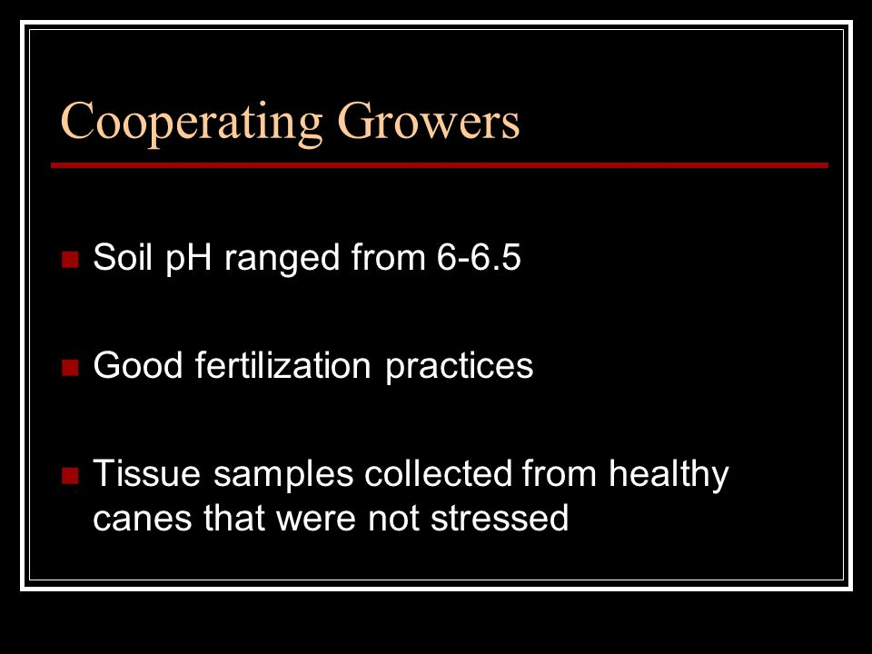 Cooperating Growers Soil pH ranged from 6-6.5 Good fertilization practices Tissue samples collected from healthy canes that were not stressed