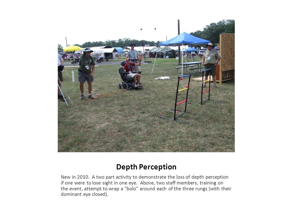 Depth Perception New in 2010.