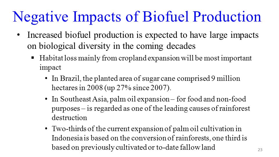 23 Negative Impacts of Biofuel Production Increased biofuel production is expected to have large impacts on biological diversity in the coming decades  Habitat loss mainly from cropland expansion will be most important impact In Brazil, the planted area of sugar cane comprised 9 million hectares in 2008 (up 27% since 2007).