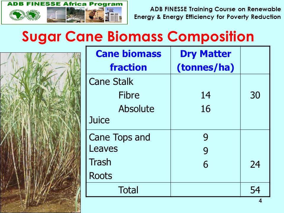 ADB FINESSE Training Course on Renewable Energy & Energy Efficiency for Poverty Reduction 4 Cane biomass fraction Dry Matter (tonnes/ha) Cane Stalk Fibre Absolute Juice 14 16 30 Cane Tops and Leaves Trash Roots 99699624 Total54 Sugar Cane Biomass Composition