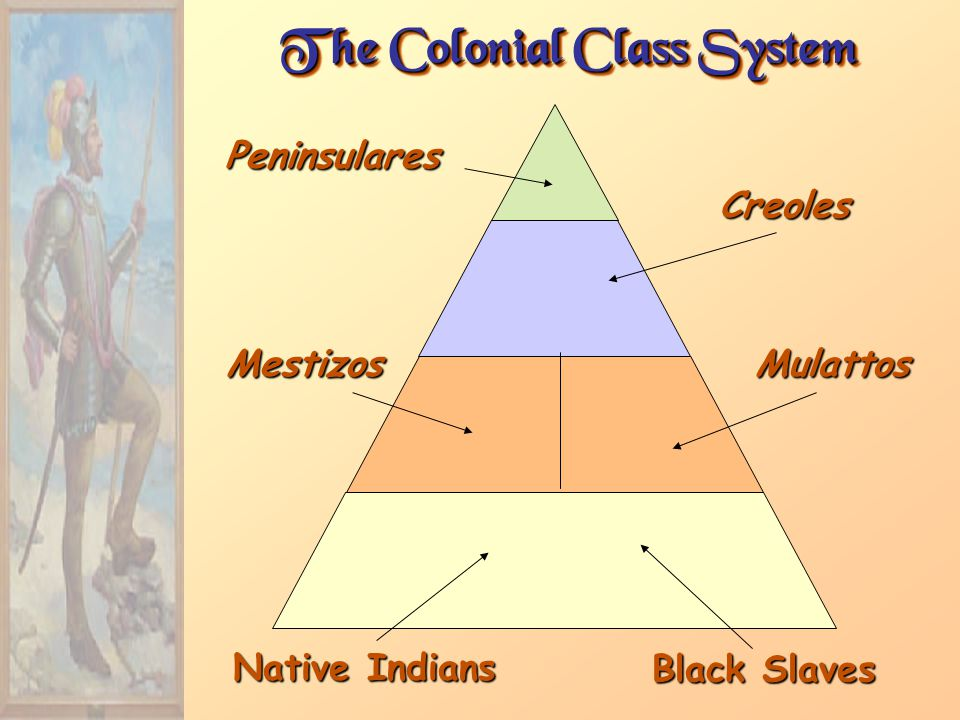 The Colonial Class System Peninsulares Creoles MestizosMulattos Native Indians Black Slaves