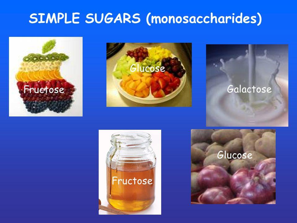 SIMPLE SUGARS (monosaccharides) Fructose Glucose Fructose Galactose