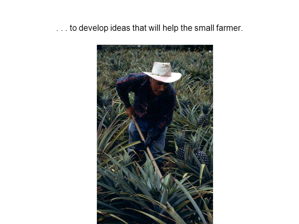 ... to develop ideas that will help the small farmer.