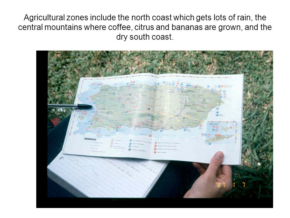 Agricultural zones include the north coast which gets lots of rain, the central mountains where coffee, citrus and bananas are grown, and the dry sout