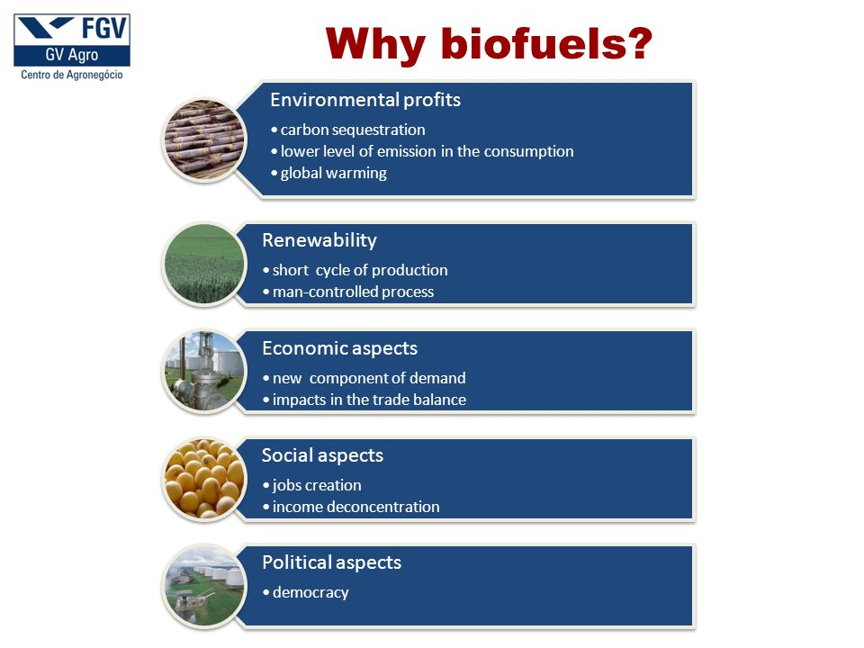 Why biofuels? Environmental profits carbon sequestration lower level of emission in the consumption global warming Renewability short cycle of product