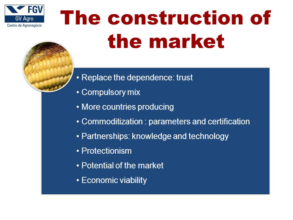 Replace the dependence: trust Compulsory mix More countries producing Commoditization : parameters and certification Partnerships: knowledge and technology Protectionism Potential of the market Economic viability The construction of the market