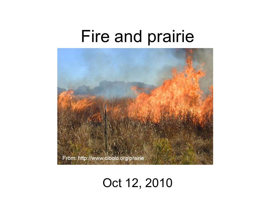 Fire and prairie Oct 12, 2010 From: http://www.cibolo.org/prairie