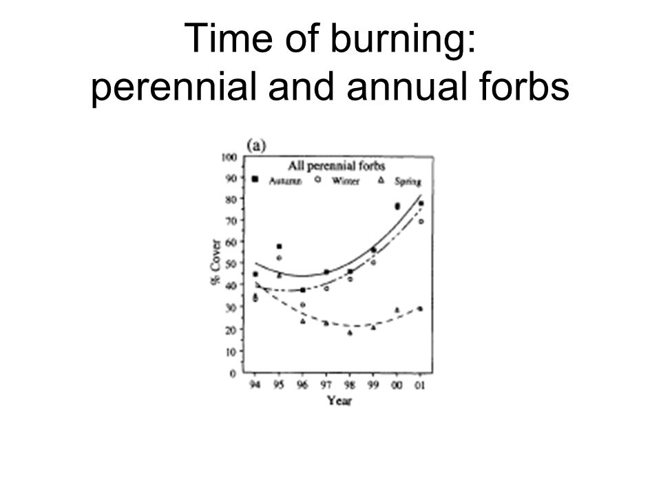 Time of burning: perennial and annual forbs
