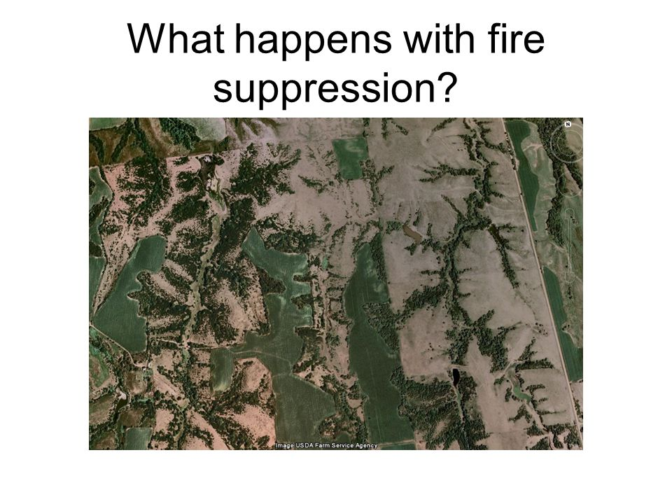 What happens with fire suppression