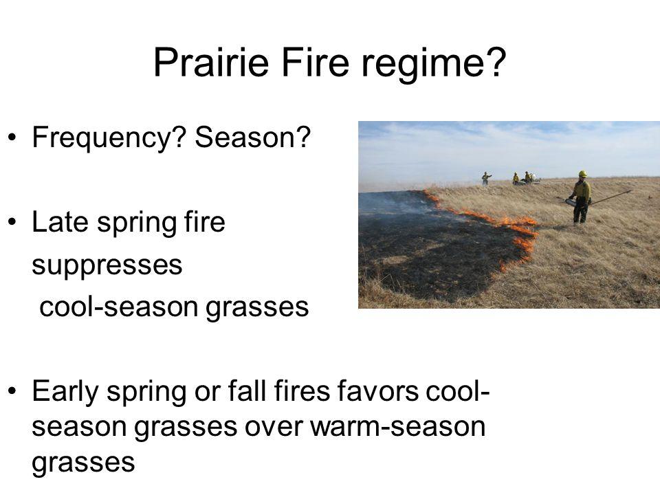 Prairie Fire regime. Frequency. Season.