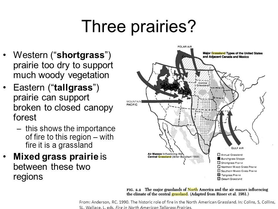Three prairies.