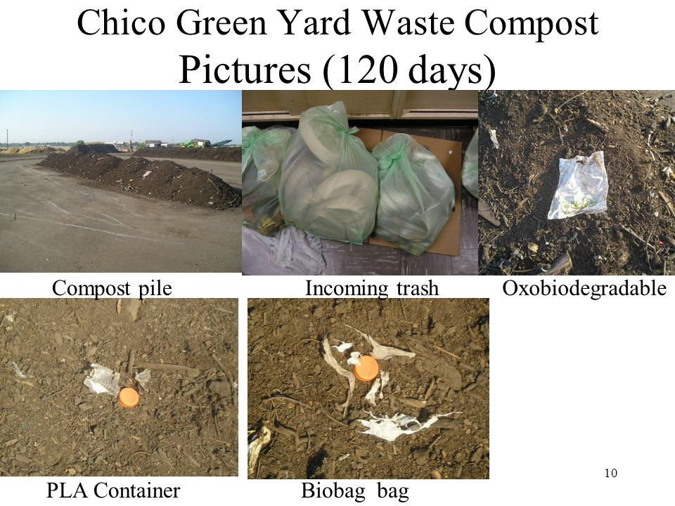 10 Chico Green Yard Waste Compost Pictures (120 days) OxobiodegradableCompost pile PLA ContainerBiobag bag Incoming trash