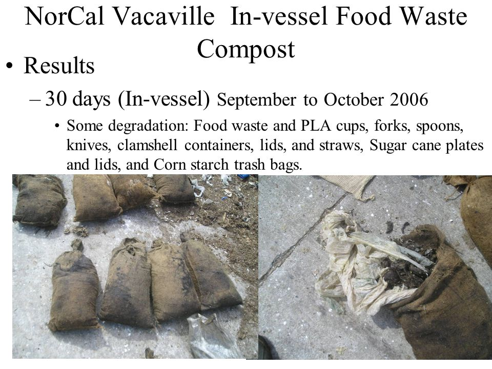 18 NorCal Vacaville In-vessel Food Waste Compost Results –30 days (In-vessel) September to October 2006 Some degradation: Food waste and PLA cups, for
