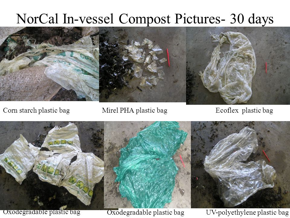 19 NorCal In-vessel Compost Pictures- 30 days Oxodegradable plastic bag UV-polyethylene plastic bag Mirel PHA plastic bagCorn starch plastic bagEcofle
