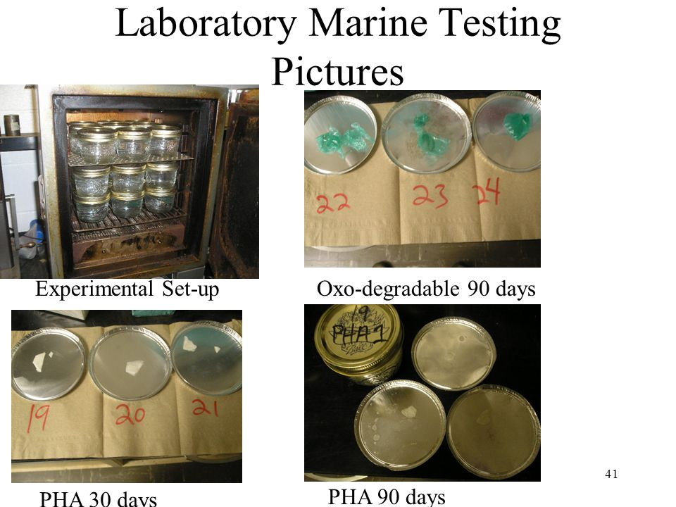 41 Laboratory Marine Testing Pictures Experimental Set-upOxo-degradable 90 days PHA 30 days PHA 90 days
