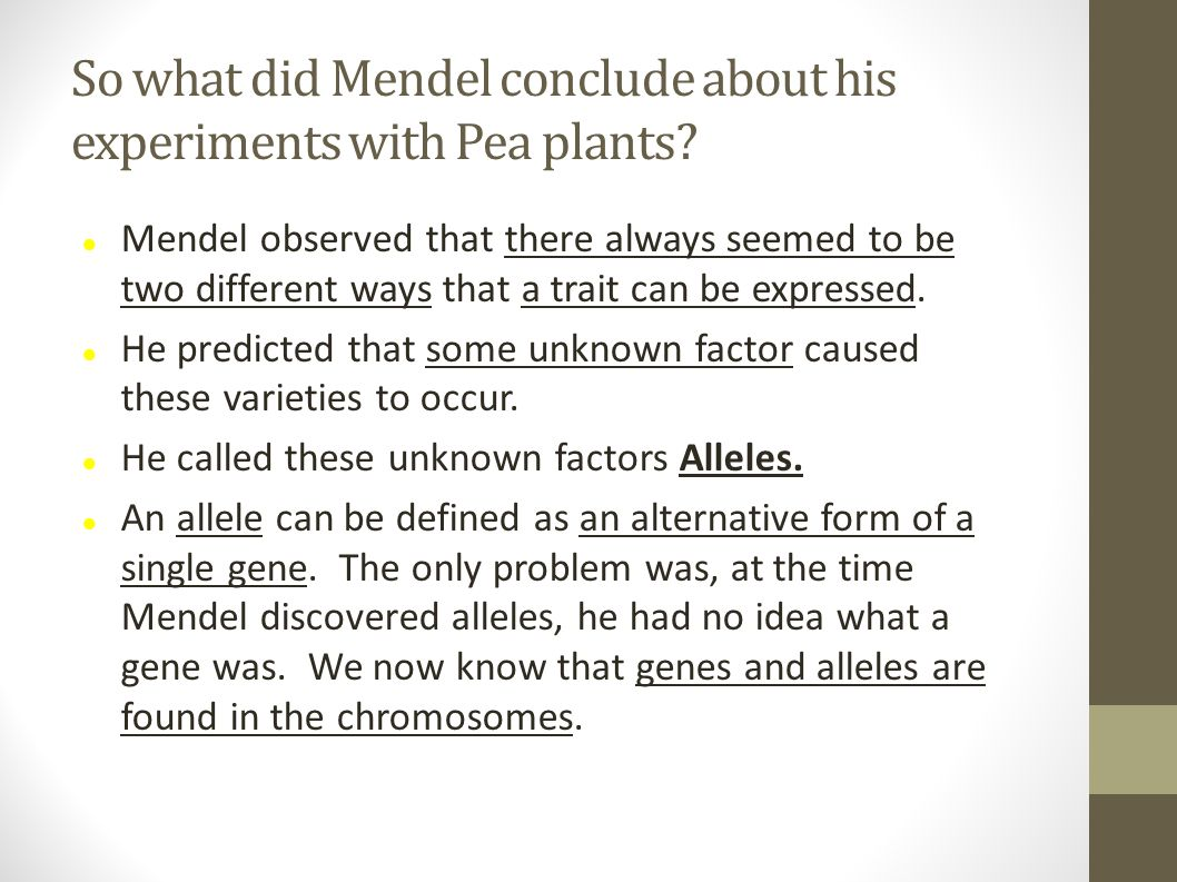 So what did Mendel conclude about his experiments with Pea plants.