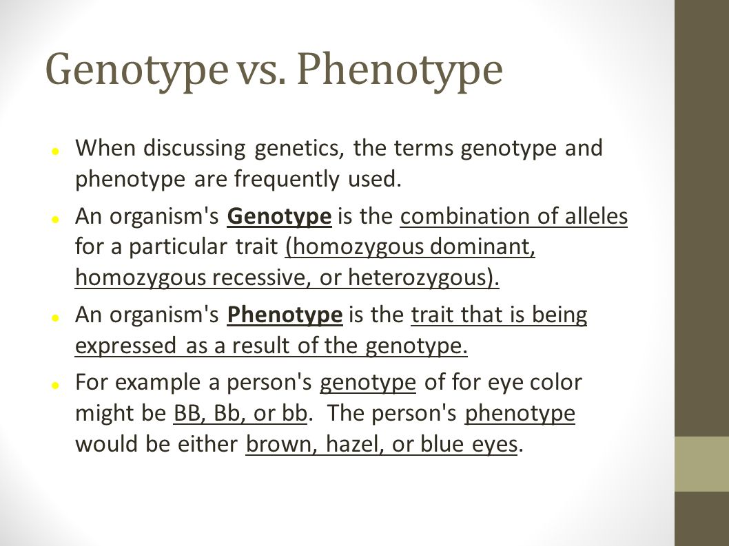 Genotype vs. Phenotype When discussing genetics, the terms genotype and phenotype are frequently used. An organism's Genotype is the combination of al