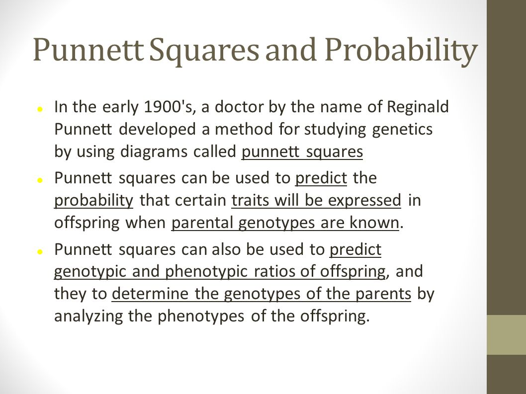 Punnett Squares and Probability In the early 1900's, a doctor by the name of Reginald Punnett developed a method for studying genetics by using diagra