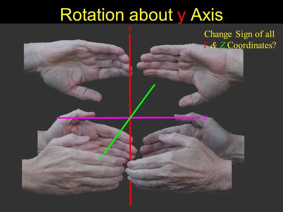 Rotation about y Axis Change Sign of all Y & Z Coordinates?
