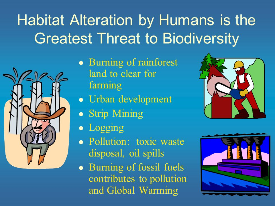 The Global Biodiversity Crisis Major threats to global biodiversity: habitat destruction & pollution introduction of non-native species over-exploitation of wildlife