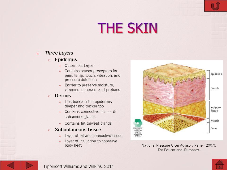  Involves full-thickness tissue loss.
