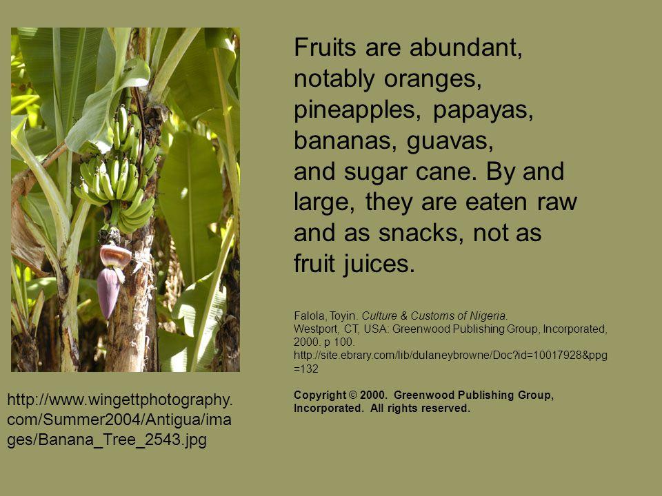 Fruits are abundant, notably oranges, pineapples, papayas, bananas, guavas, and sugar cane.