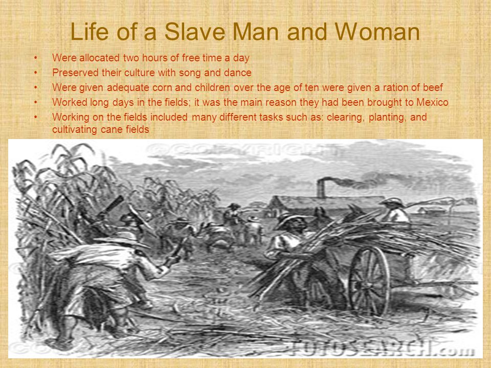 Life of a Slave Man and Woman Were allocated two hours of free time a day Preserved their culture with song and dance Were given adequate corn and chi